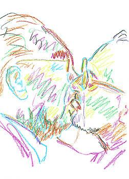 Kiss by Pekka Liukkonen