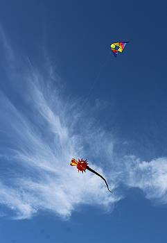Kites and Clouds by FD Graham