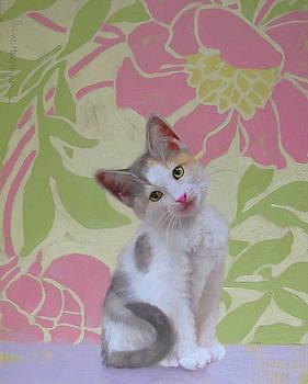 Kitten Considers by Diane Hoeptner