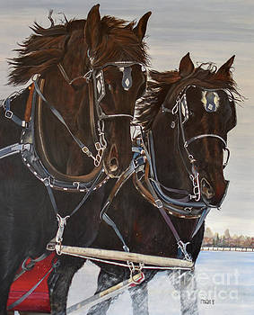 Knights On Four by Marilyn McNish