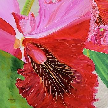 Knowing Pink by Pamela Trueblood