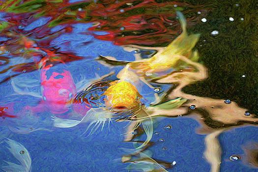 Omaste Witkowski - Koi Pond Fish - Friendly Enemies - by Omaste Witkowski