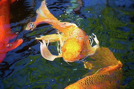 Omaste Witkowski - Koi Pond Fish - Golden Surprises - by Omaste Witkowski