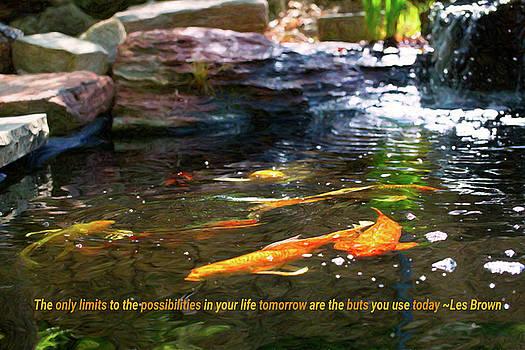 Omaste Witkowski - Koi Pond Fish - Limitless Possibilities - by Omaste Witkowski