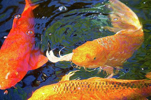 Omaste Witkowski - Koi Pond Fish - Making Room - by Omaste Witkowski