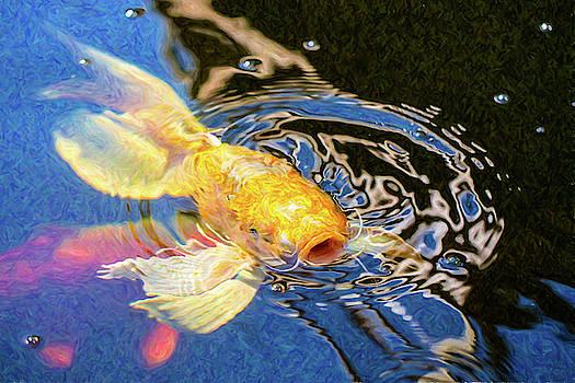 Omaste Witkowski - Koi Pond Fish - Pretty Pucker - by Omaste Witkowski
