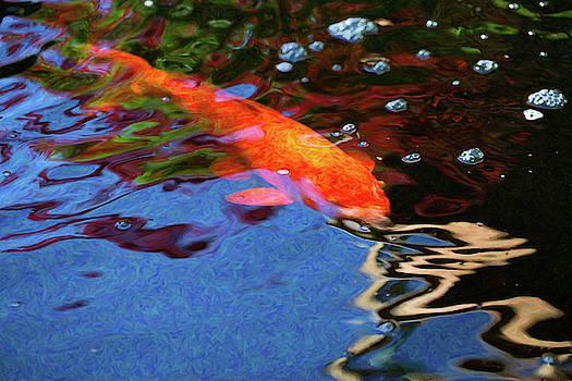 Omaste Witkowski - Koi Pond Fish - Vibrant Dreams - by Omaste Witkowski