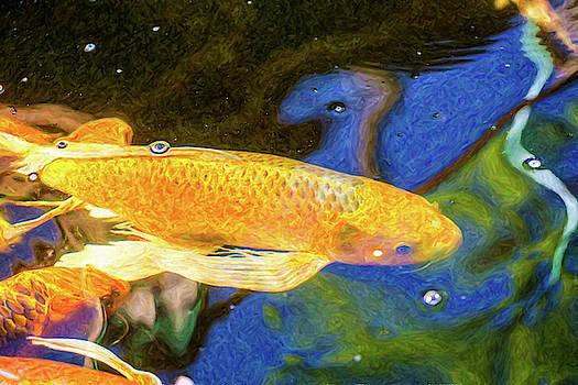 Omaste Witkowski - Koi Pond Fish - Winning Moves - by Omaste Witkowski