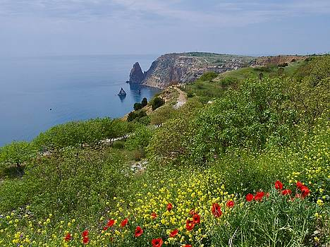 Crimea view, Fiolent by Tamara Sushko