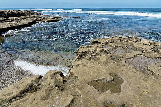 La Jolla Tide Pools by Robert VanDerWal