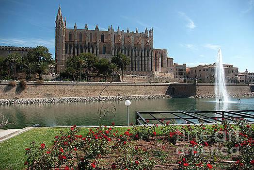 La Seu, Palma by John Edwards