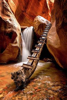 Ladder to Beyond by Ryan Wyckoff