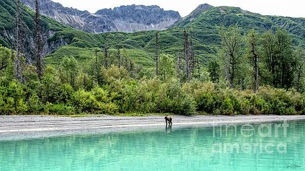 Lake Clark National Park and Preserve II by Jan Mulherin