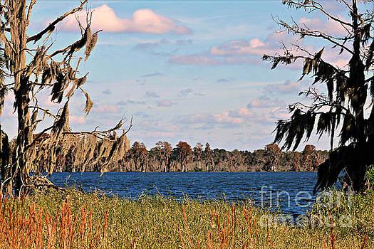 Diann Fisher - Lake Hancock Lakeland Florida