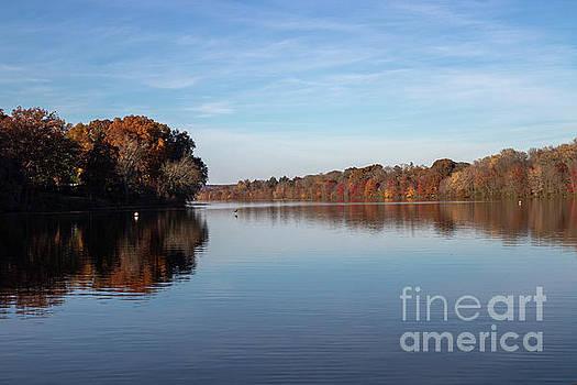 Lake In Autumn by Nicki Hoffman