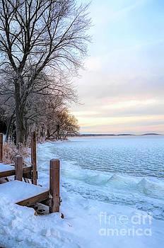 Lake in Winter by Jill Battaglia