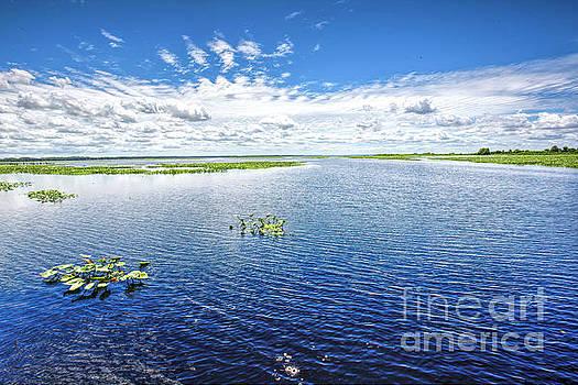 Lake Istokpoga, Florida 2 by Felix Lai