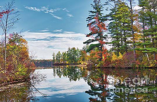 Lake by Mim White