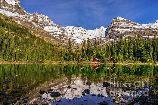 Lake OHara Lodge Cottages Morning Light by Mike Reid