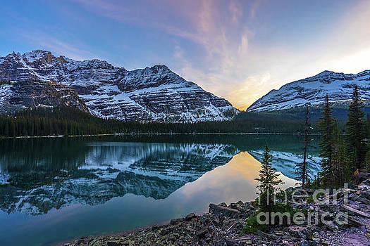 Lake OHara Sunset Reflection by Mike Reid