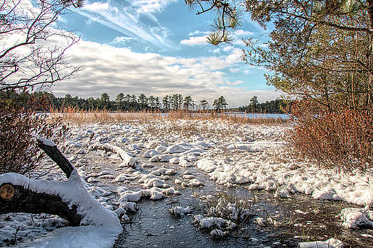 Kristia Adams - Lake Oswego After The Snow