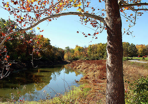 Lake Reflections of Autumn by Ellen Tully