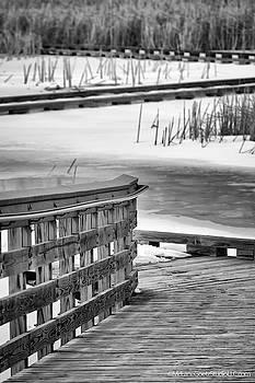 Lake Saint Clair Metropark Board Walk  by LeeAnn McLaneGoetz McLaneGoetzStudioLLCcom