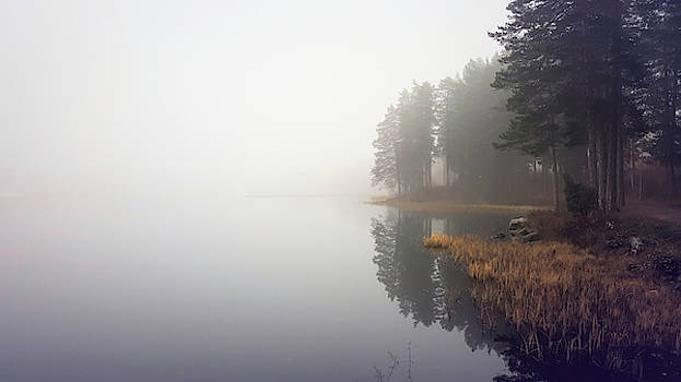 Lake Solitude And Reflections by Barry W King