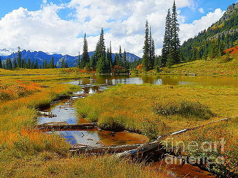 Lake To Flow In Story To Tell by Art Sandi
