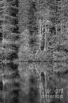 Lakeside Bliss by Jeni Gray