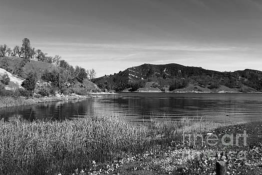 Lakeside by Katherine Erickson