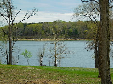 Lakeside Landscape by Stacey Wells