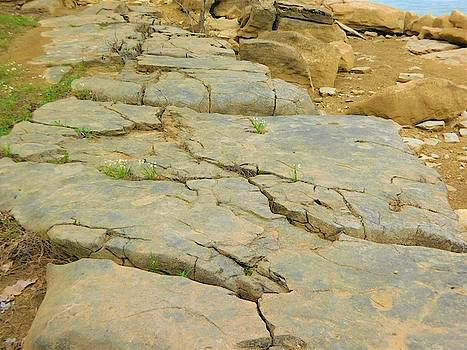 Lakeside Rocks by Stacey Wells
