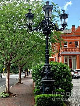 Lamp Posts of Savannah by Linda Covino