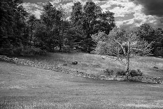 Landscape - Hurley, NY by Tom Romeo