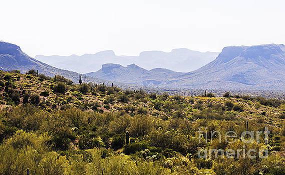 Landscape of Arizona 2 by Felix Lai