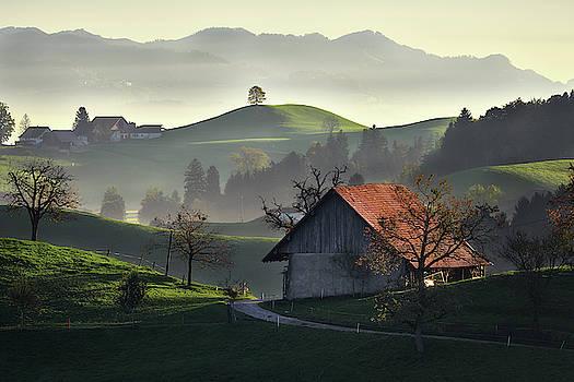 Landscape of shepards by Marek Ondracek