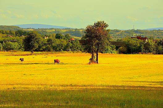Henryk Gorecki - Landscape with cows
