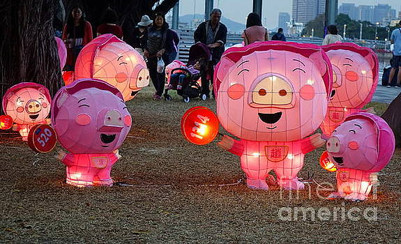 Lantern Festival for the Chinese Year of the Pig by Yali Shi