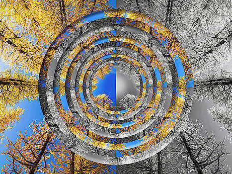 Pelo Blanco Photo - Larches Color to Black and White Reflection Circles
