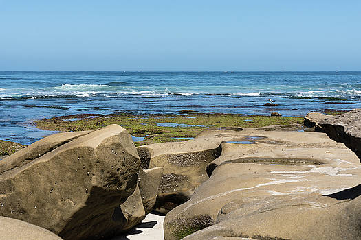 Large Tide Pool Boulders by Robert VanDerWal