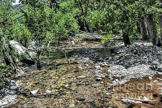 Larger Creek by Joe Lach