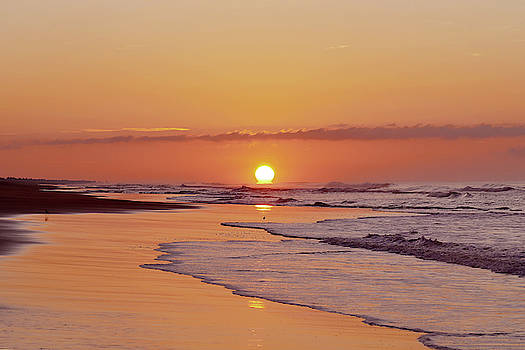 Las Olas Golden Sunrise by Jackson Ball