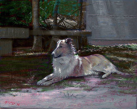Lassie by Demetrios Vlachos