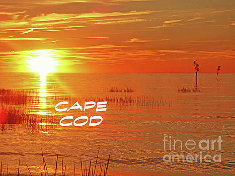 Sharon Williams Eng - Last Glow Cape Cod Poster 300