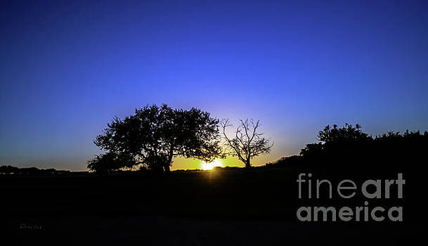 Ricardos Creations - Last Light Texas Hill Country Paradise Canyon Sunset 8053A