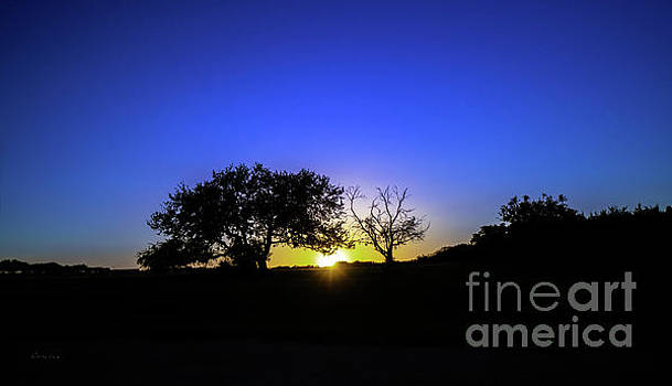 Ricardos Creations - Last Light Texas Hill Country Paradise Canyon Sunset 8053A1