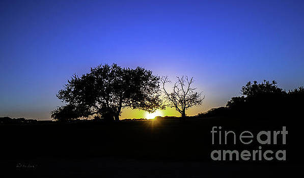 Ricardos Creations - Last Light Texas Hill Country Paradise Canyon Sunset 8053B