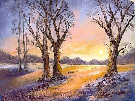 Last rays of evening by Anne Kerr