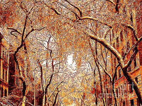 Late Autumn by Zedi